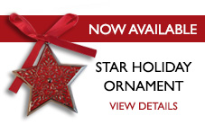 Star Holiday Ornament - View Details